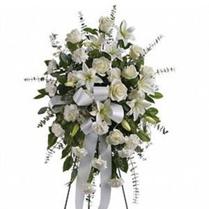 Flores-300x300.jpg